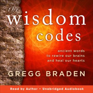 The Wisdom Codes audiobook cover